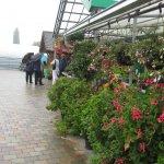 Gartenbau Ausflug